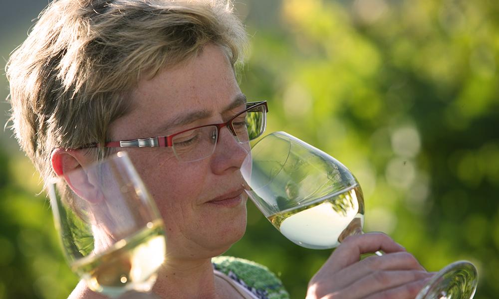 Wein probieren und entdecken